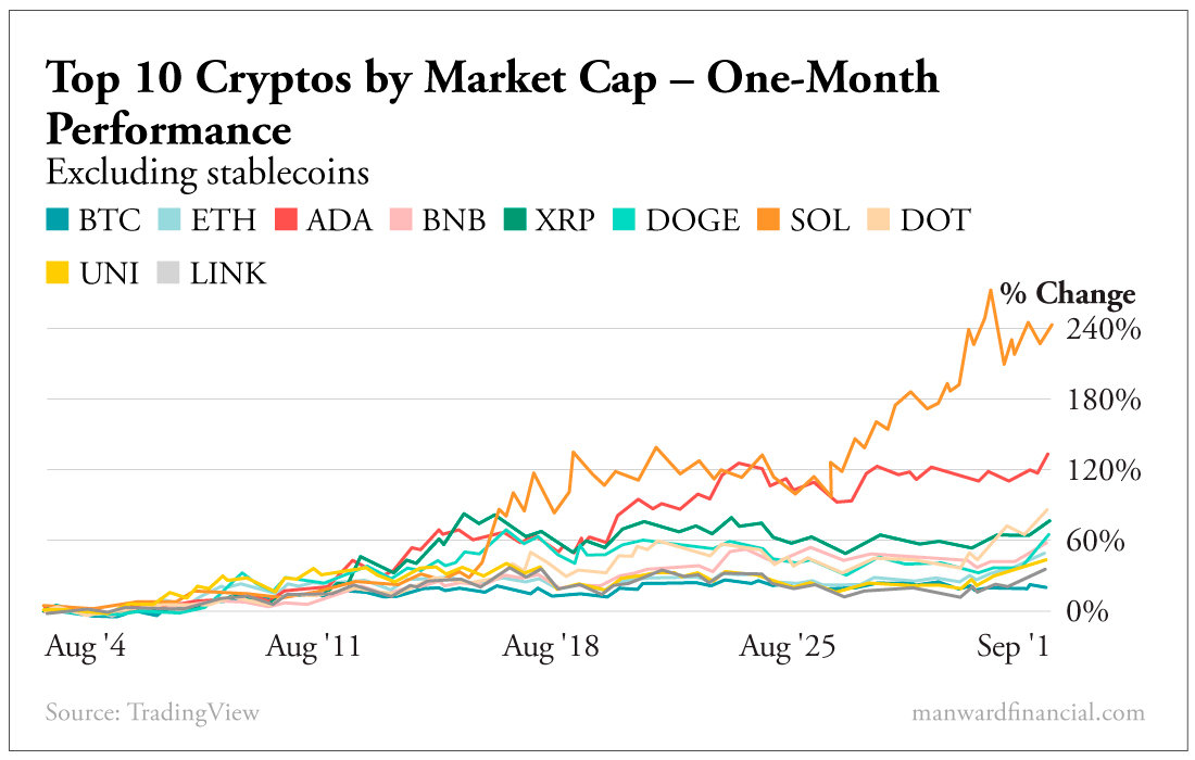 Top 10 Cryptos By Market Cap - One-Month Performance