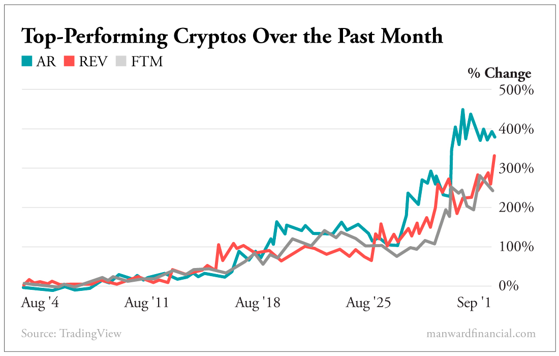 Top-Performing Cryptos Over the Past Month